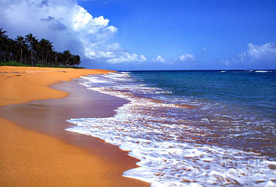 Puerto Rico Shoreline Along Pinones Art Print by Thomas R Fletcher