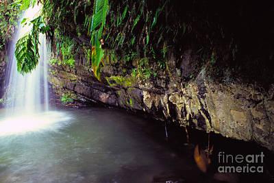 Puerto Rico Waterfall Art Print by Thomas R Fletcher
