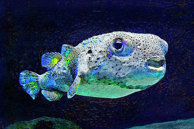 Puffer Digital Art - Puffer Fish by Jane Schnetlage