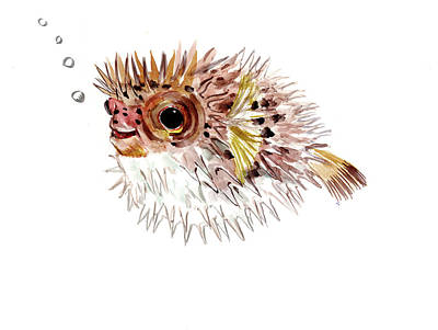 Painting - Pufferfish by Suren Nersisyan