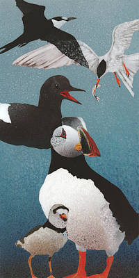 Sea Birds Painting - Puffin I by Fred Chuang