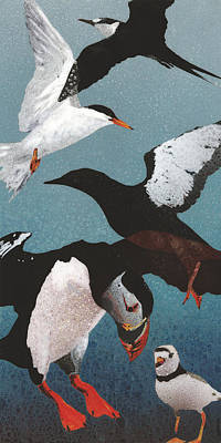 Sea Birds Painting - Puffin II by Fred Chuang