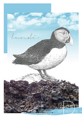 Puffin Mixed Media - Puffin by Sonia Nicolson