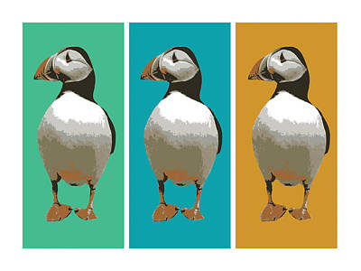 Bird Digital Art - Puffin Trio Pop Art by Michael Tompsett