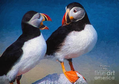 Puffin Mixed Media - Puffins by Garland Johnson