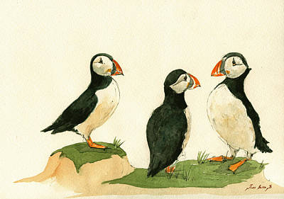 Bird Watercolor Painting - Puffins by Juan  Bosco
