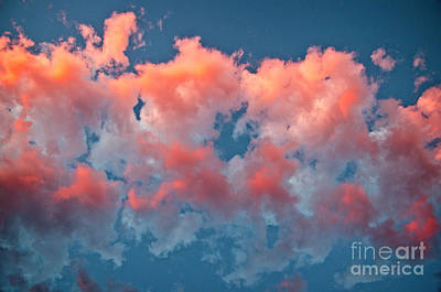 Photograph - Puffy Pink Clouds by Jim And Emily Bush