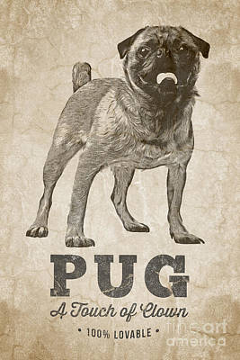 Canines Digital Art - Pug A Touch Of Clown by Edward Fielding