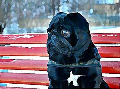 Dogs Wall Art - Digital Art - Pug In Deutschland by Raven Hannah