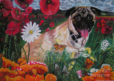 Pastel - Pug In Poppies by Michaeline McDonald
