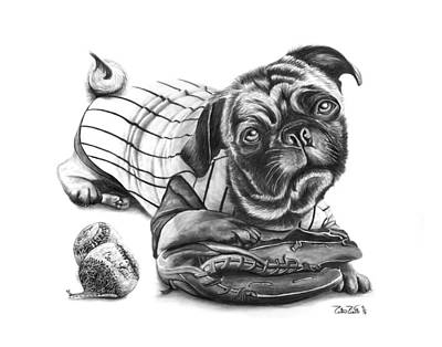 Baseball Art Drawing - Pug Ruth  by Peter Piatt