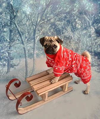 Pug Winter Wonderland Art Print by Tina Moreau