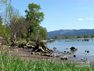 Columbia River Photograph - Puget Island by Charles Robinson
