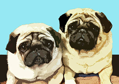 Drawing - Pugs by Mary Castellan