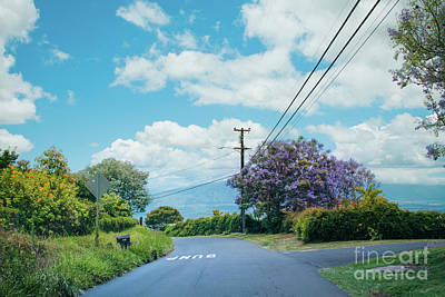 Photograph - Pulehuiki Road Upcountry Kula Maui Hawaii by Sharon Mau
