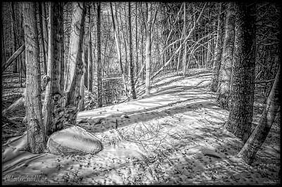 Pathways Photograph - Pulled Into The Woods Black And White by LeeAnn McLaneGoetz McLaneGoetzStudioLLCcom