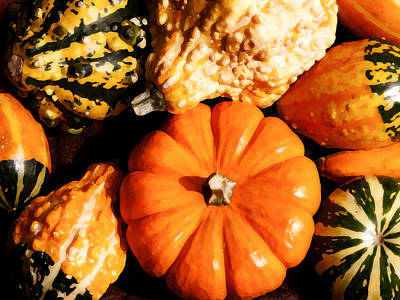 Photograph - Pumkin And Gourds by Steven Sparks
