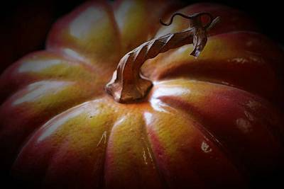 Photograph - Pumkin by The Art Of Marilyn Ridoutt-Greene