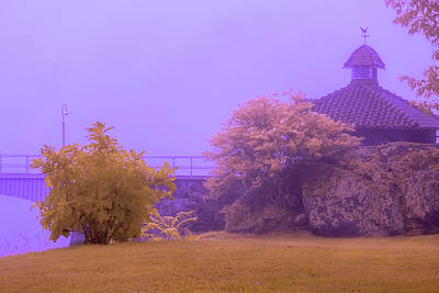 Photograph - Pump House In Infrared by Tom Singleton