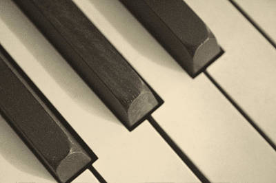Photograph - Pump Organ Keys by Roger Passman