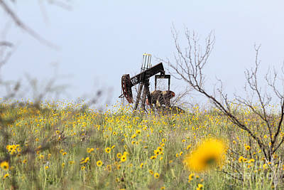 Photograph - Pumpjack 122 by Alycia Christine