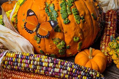 Pumpkin And Butterfly Art Print