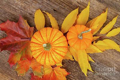 Pumpkin And Leaves Art Print