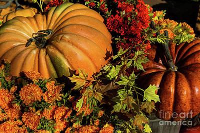 Photograph - Pumpkin And Mum Arrangement by Jennifer White