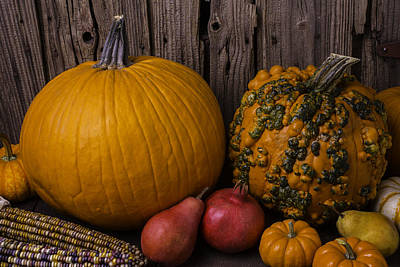 Gourds Photograph - Pumpkin Autumn Still Life by Garry Gay