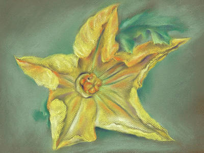 Pastel - Pumpkin Blossom And Leaf by MM Anderson