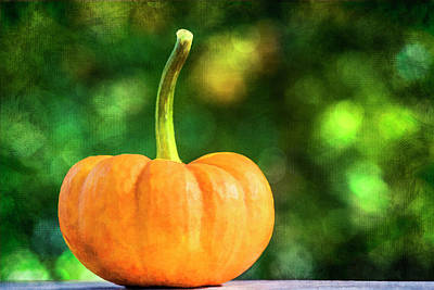 Photograph - Pumpkin by Cathy Kovarik