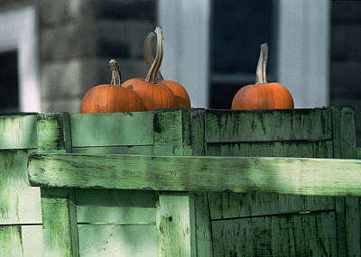 Photograph - Pumpkin Dance by Kenneth Campbell