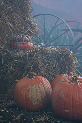 Photograph - Pumpkin Decor by Pamela Williams