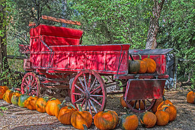 Photograph - Pumpkin Delivery by Alana Thrower