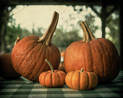 Photograph - Pumpkin Family Portrait by Caitlyn Grasso