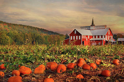 Barn Digital Art - Pumpkin Farm by Lori Deiter