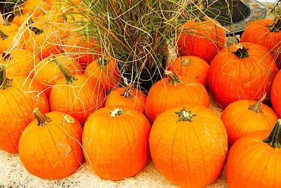 Pumpkin Fest Original