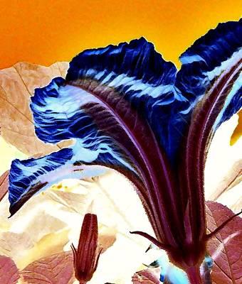 Floral Photograph - Pumpkin Flower by Lisa Kaiser