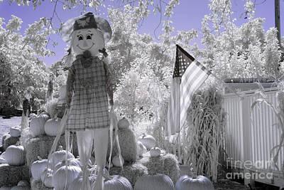 Photograph - Pumpkin Garden by Jim And Emily Bush