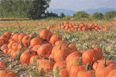 Photograph - Pumpkin Harvest by Donna Kennedy