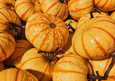Photograph - Pumpkin Harvest by Nathan Little