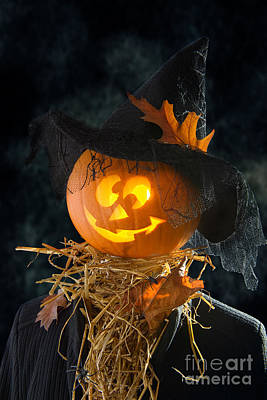 Black Lace Photograph - Pumpkin Head by Amanda Elwell