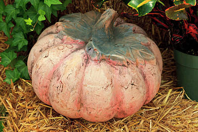 Photograph - Pumpkin by Jill Lang