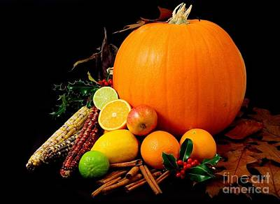 Photograph - Pumpkin Limes Lemons Corns Apples Holly Leafs by R Muirhead Art