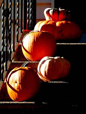 Photograph - Pumpkin Morning by Wild Thing
