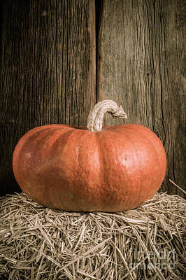 Pumpkin On Straw Bale Art Print by Edward Fielding