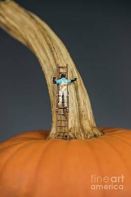 Photograph - Pumpkin Painter - 2 by David Bearden
