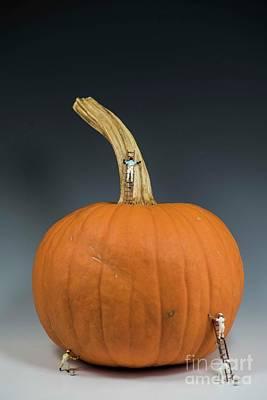 Photograph - Pumpkin Painter - 3 by David Bearden