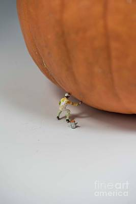 Photograph - Pumpkin Painter - 5 by David Bearden