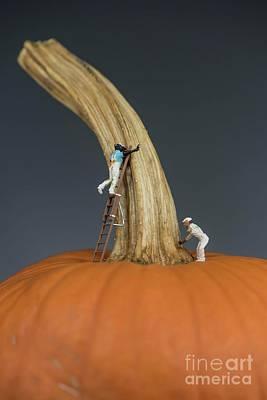 Photograph - Pumpkin Painters - 1 by David Bearden